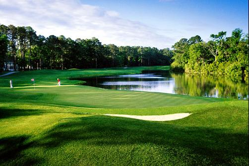 The Westin Hilton Head Island Resort & Spa - Hilton Head - Golf course