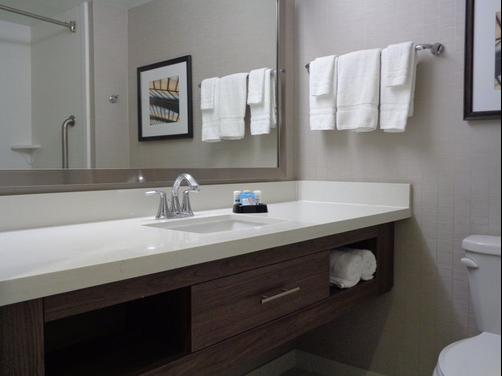 Holiday Inn Franklin - Cool Springs - Brentwood - Bathroom