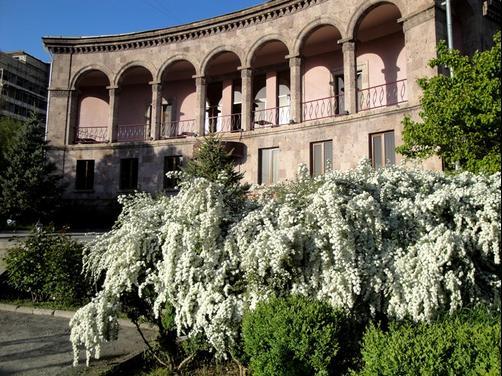 Villa Des Roses Villa Des Roses Hotel