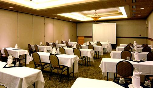 Best Western PREMIER Nicollet Inn - Burnsville - Conference room