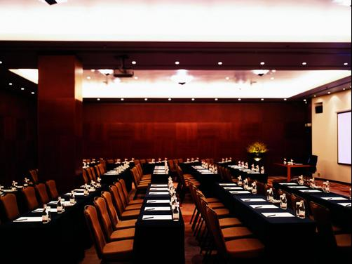 Ararat Park Hyatt Moscow - Moscow - Conference room