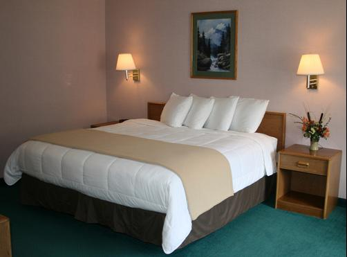 Allington Inn and Suites - South Fork - King bedroom