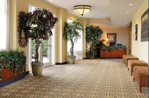 Holiday Inn Raleigh-Durham Airport - Morrisville - Conference room